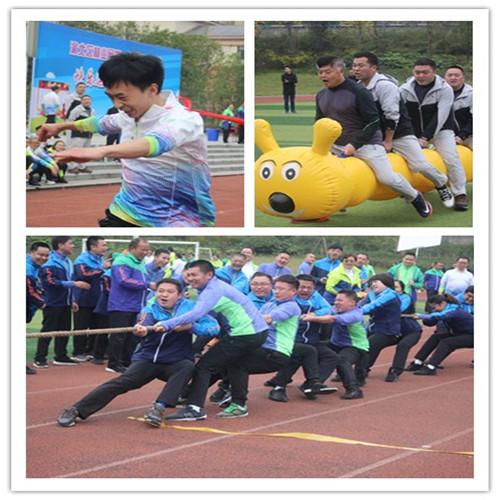 渝北区林业局运动会拓展训练